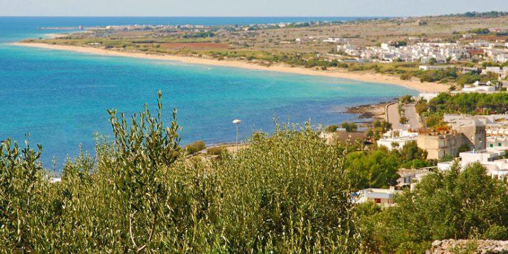 Vista da Torre Vado e Spiaggia Pescoluse